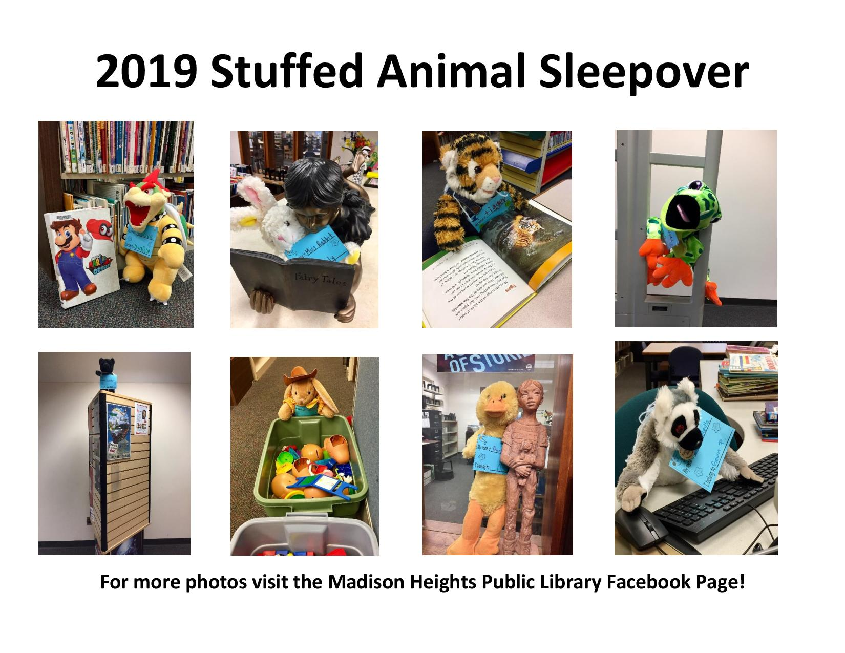 2019 Stuffed Animal Sleepover-page-001-1